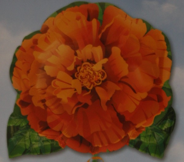 Folienballon orange Zinnie - 58cm