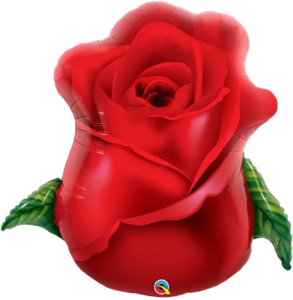Rote Rose Red Rose - 84cm 33''